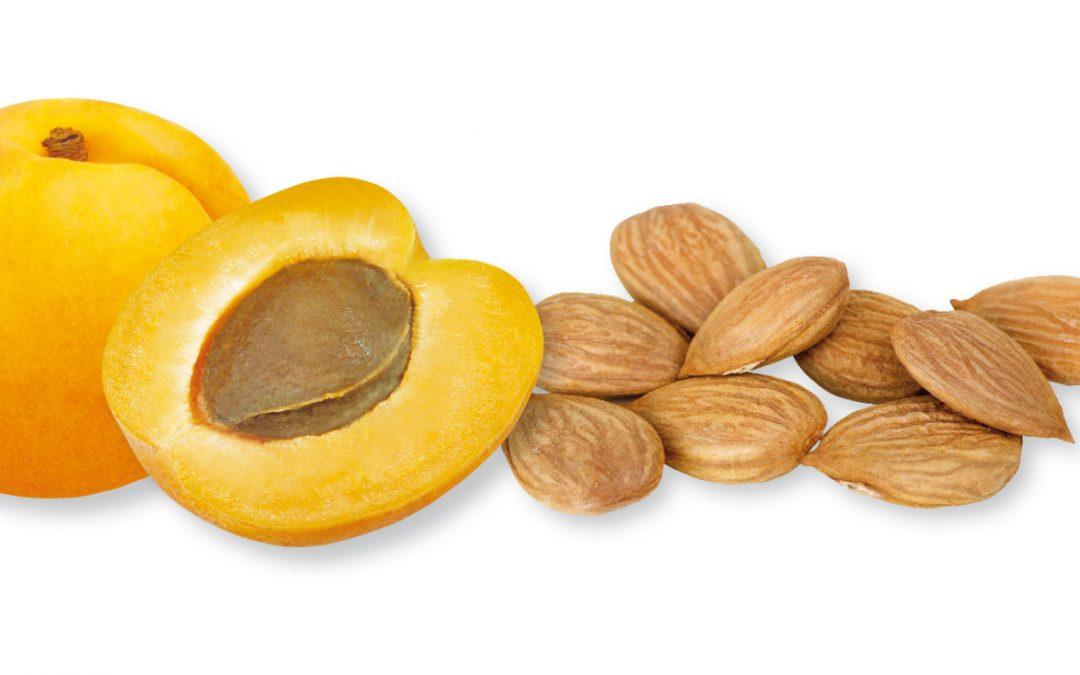 Ekstrak Biji Aprikot, Vitamin B17 Penawar Ajaib?