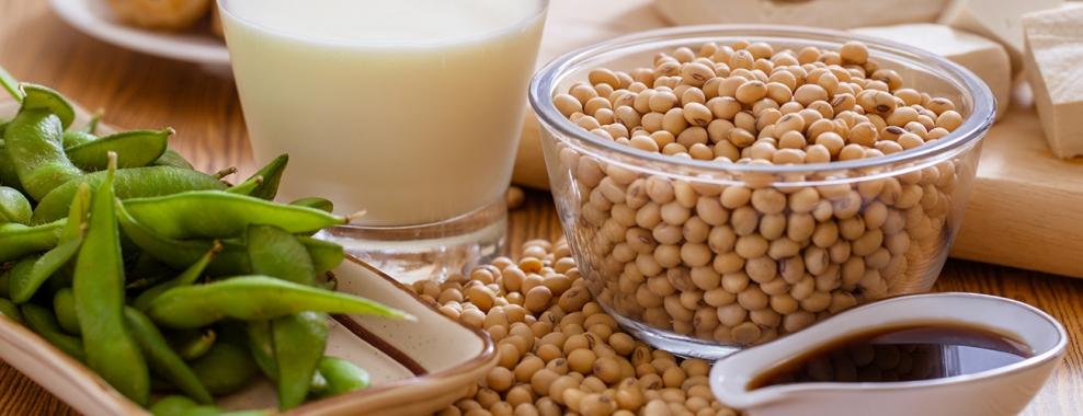 Benarkah Kacang Soya MenJAHANAMkan?