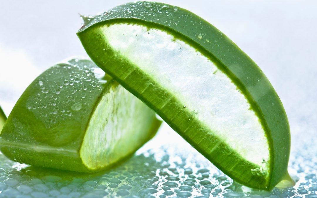 Adakah produk yang berasaskan Aloe Vera boleh MENCUCI USUS??
