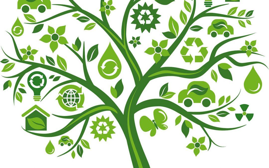 Biofuel – Tenaga dari hidupan
