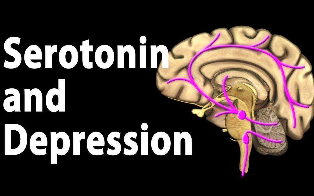 Ini Fakta tentang Serotonin dan Kemurungan yang Menarik untuk diketahui