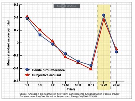 Penile Circumference vs Novelty