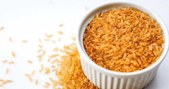jenis jenis nasi