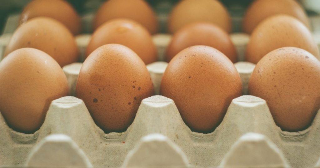 Artikel telur dan kolesterol