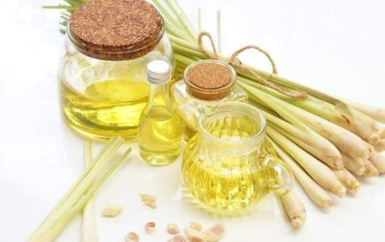 khasiat minyak pati serai